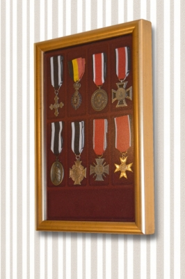 Wall display VISIO PRESTIGE for coin and medal trays