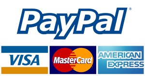 Online payments via PayPal